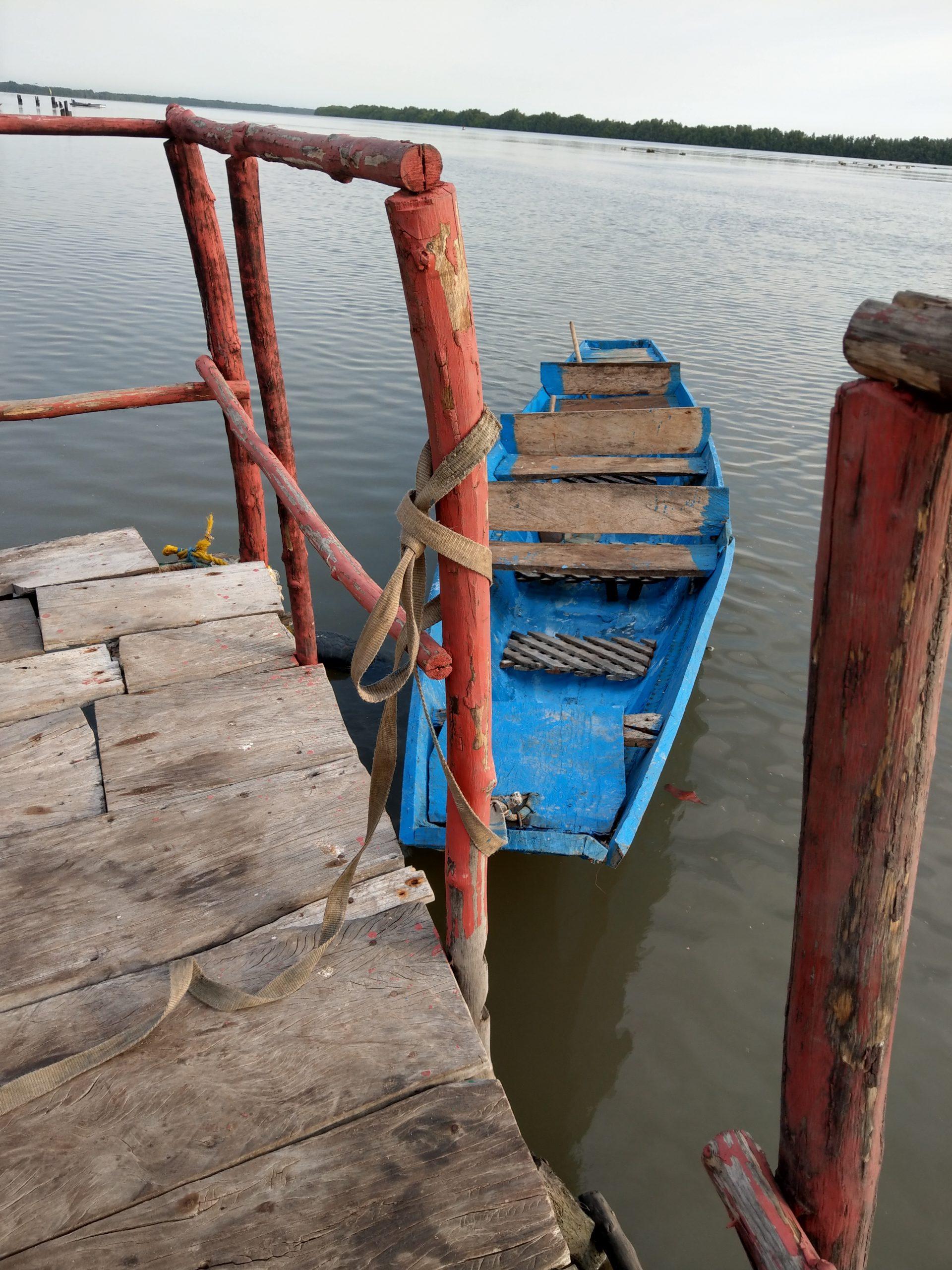 Bintang paddling boat